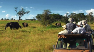 Photo of Experience the honeymoon of a lifetime in Africa! This unique continent guarantees to delight the senses. From safaris to islands in the Indian Ocean island, you'll find the perfect mix of activity and relaxation.